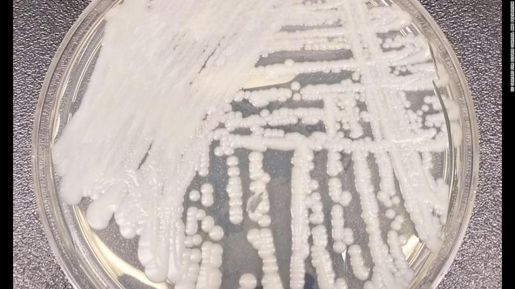Crisis climática podría ser la causa del surgimiento de misteriosa superbacteria resistente a medicamentos