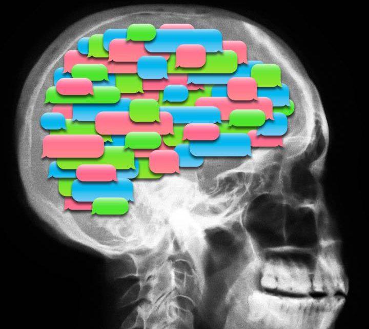 Últimas noticias del cerebro