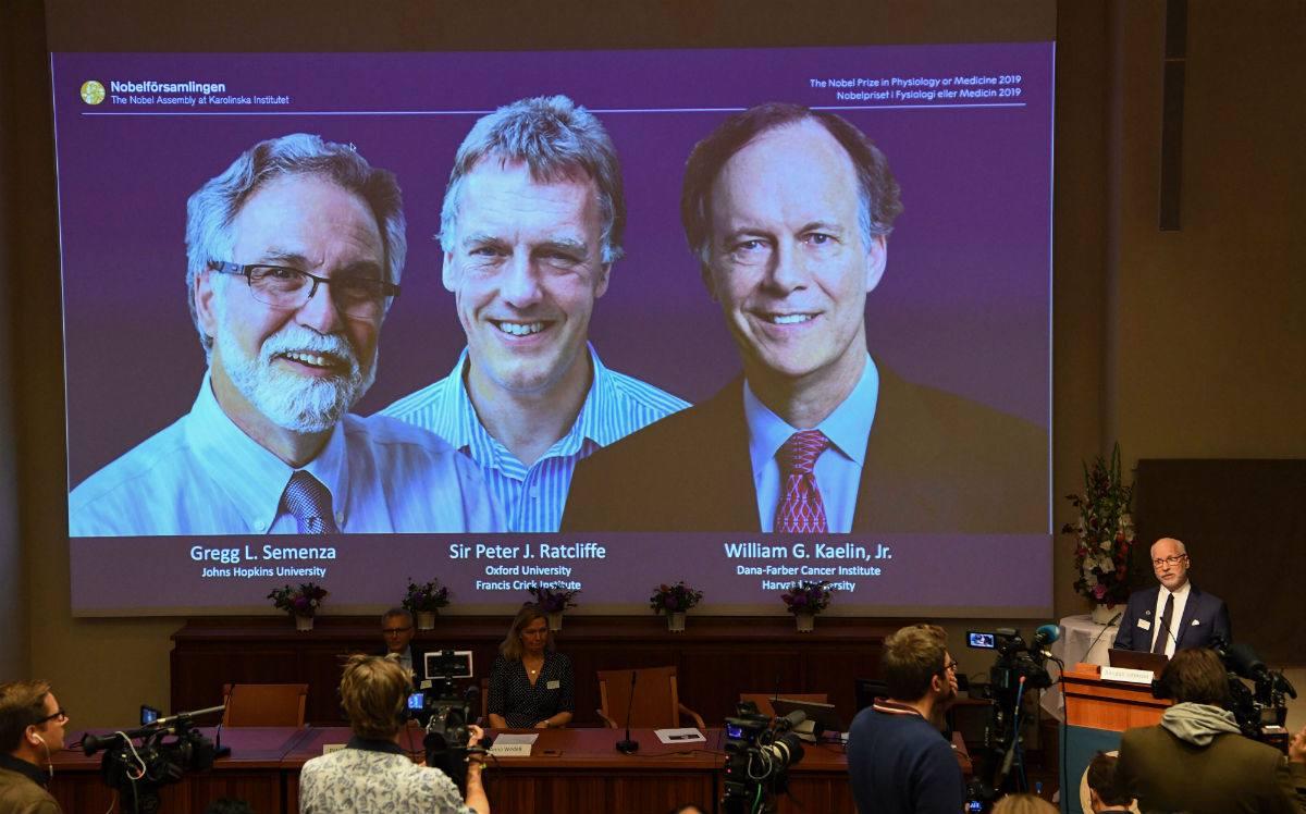 Investigación celular gana premio Nobel de Medicina