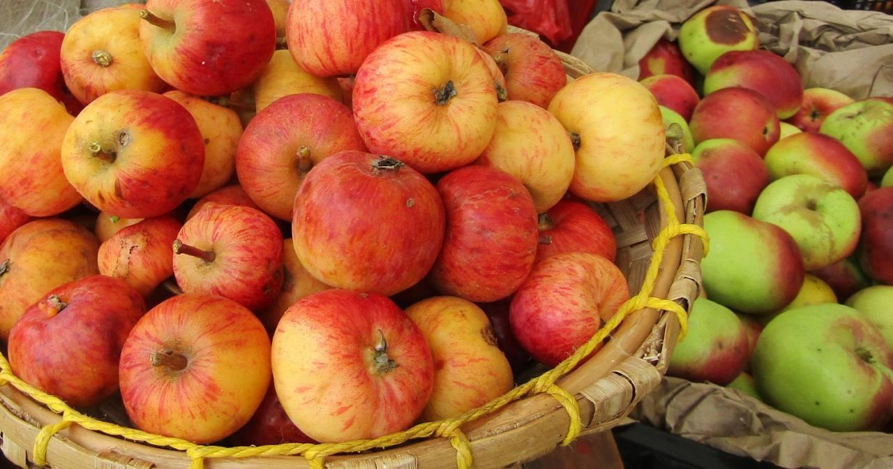 Dos manzanas al día ayuda a mantener el colesterol en niveles adecuados