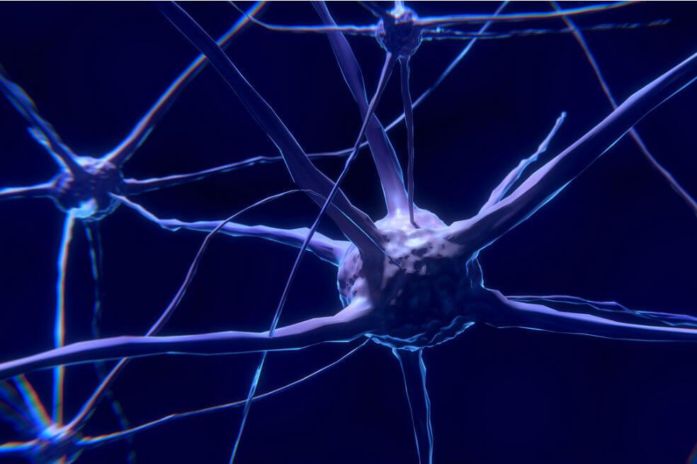 Estudio revela cómo la actividad del cerebro cambia cuando se está siendo egoísta