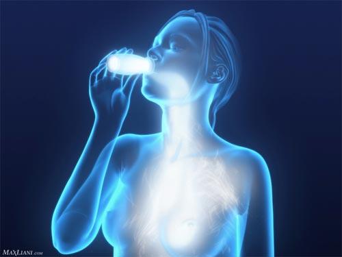 El Consumo de Probióticos Ayuda a Disminuir la Acumulación de Grasa en el Hígado