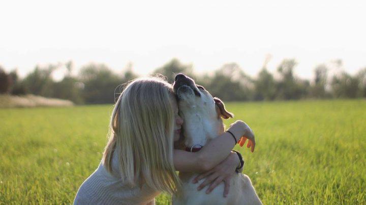 5 razas de perros más recomendadas para niños con autismo