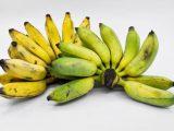 Propiedades nutricionales del plátano y beneficios para la salud