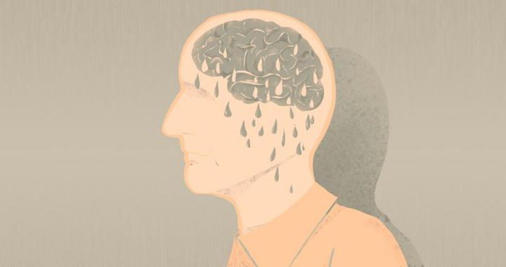 Grasa beige 'indispensable' para proteger el cerebro de la demencia
