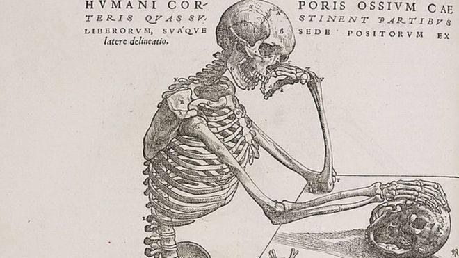 5 partes de nuestro cuerpo que hasta hace poco no sabíamos que teníamos