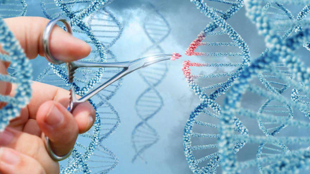 2019, año de innovaciones en el campo de la genética