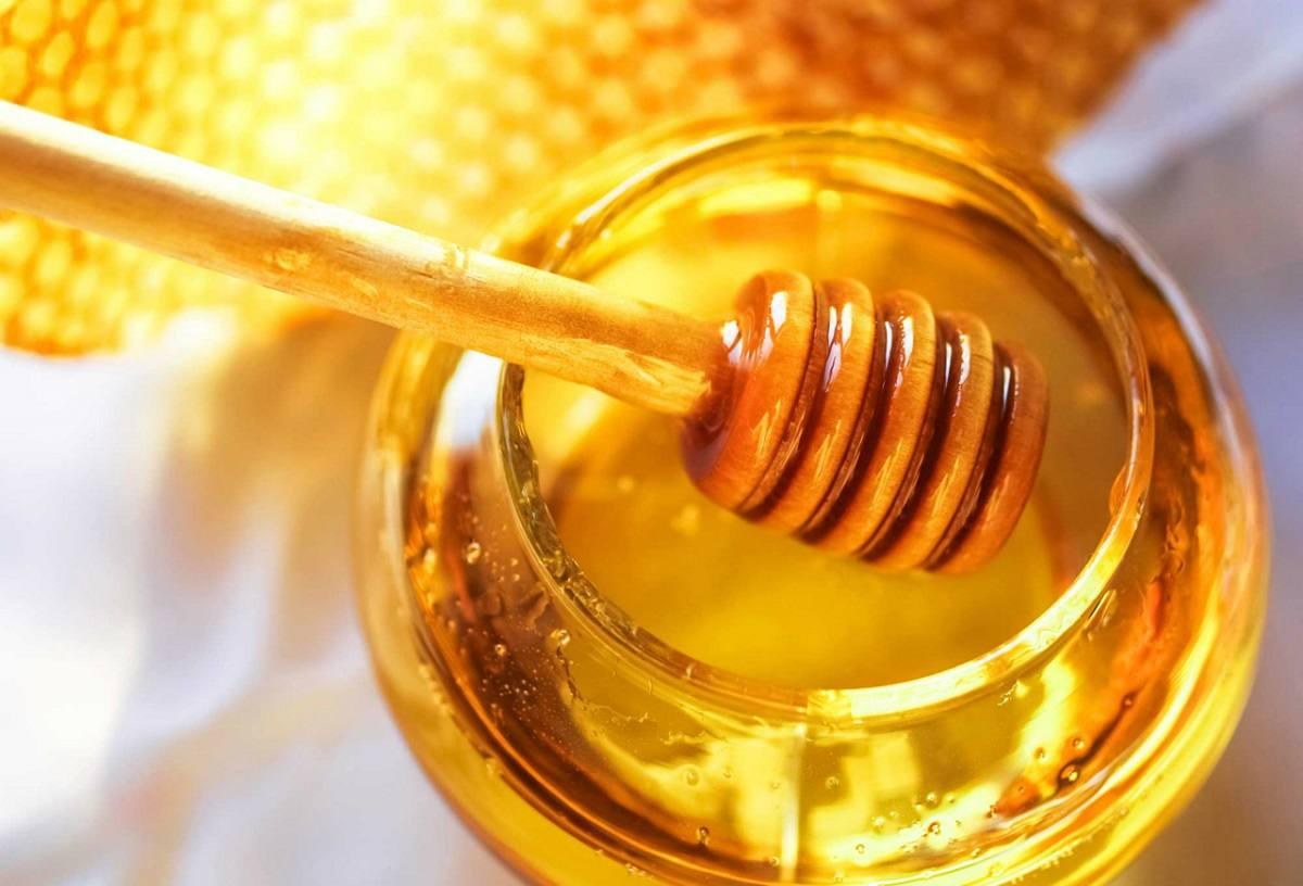 Agua tibia con miel, un remedio natural que le aportará energía