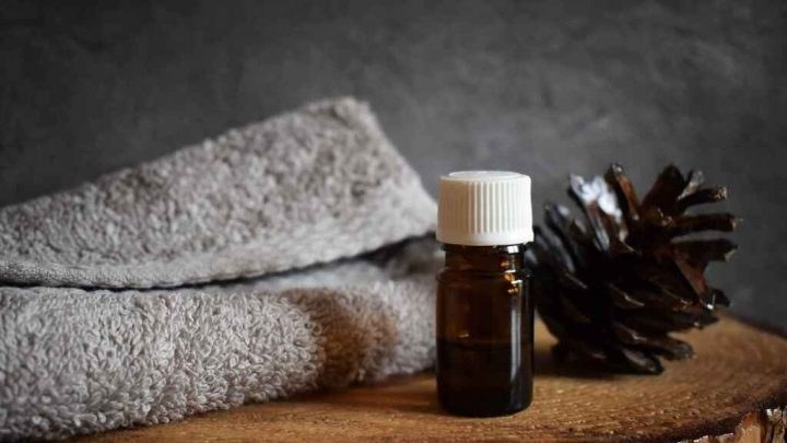 Para qué sirve el aceite de árbol de té, usos y propiedades