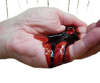 Sangre de Drago para la Gastritis y otros usos