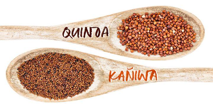 Kañiwa, una semilla con múltiples propiedades